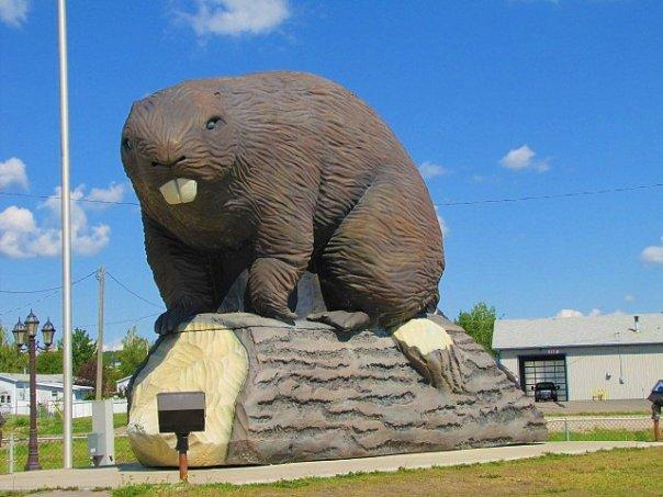 World's Biggest Beaver - Beaverlodge, Alberta, Canada - July 10, 2010