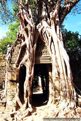BKK_Angkor 834