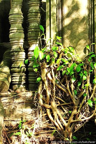 BKK_Angkor 1231