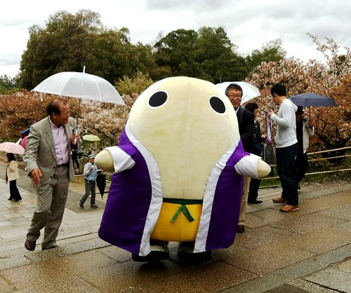 Mayumaro at Ninna-ji!