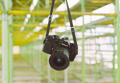 Camera of the day [End]