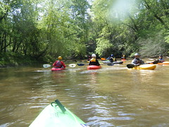 Kayaks on the Tyger