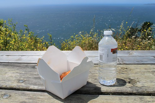 picnic at the Pacific