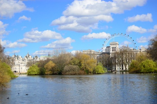 St. James's Park | Travel | My First Trip to London Town