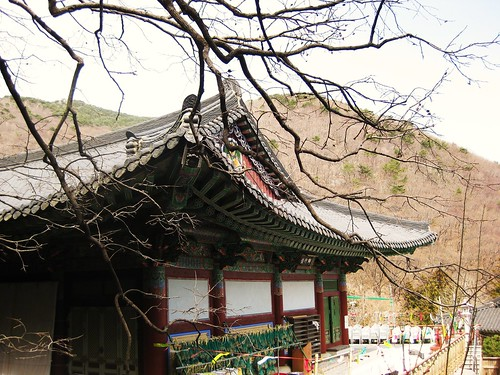 busan temple.