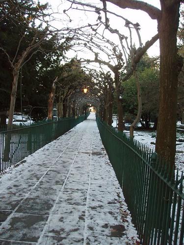 201012250210_Birdcage-walk