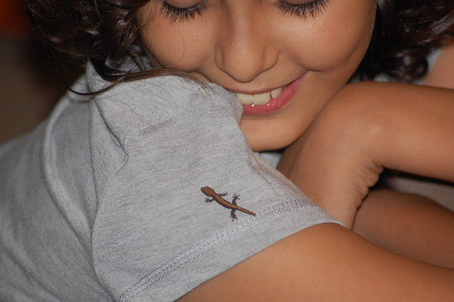 meeting tickle the gecko