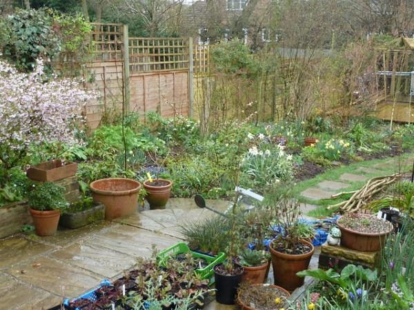 wet garden - sharing