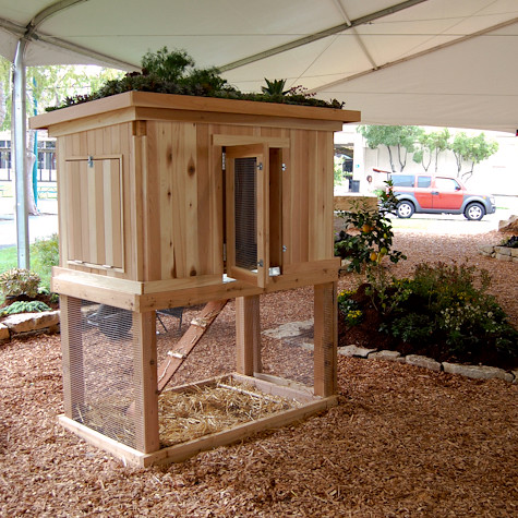 MOdern Cabana chicken coop  from we like it wild this