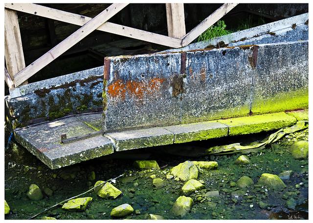 Abandoned Bridge Tongass National Forest