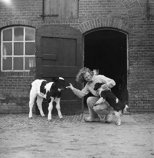 Vrouw met kalf en hond / Peasant woman with a calf and a dog