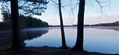Mist on Stora Alljungen