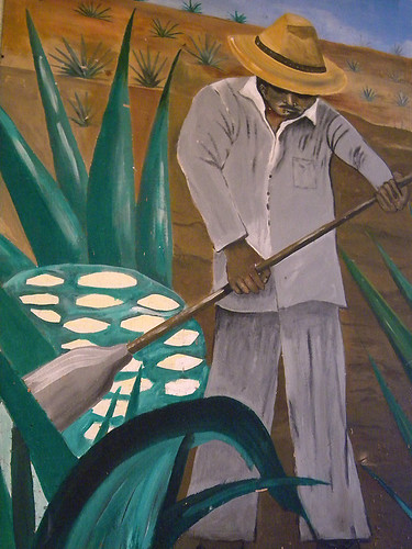 mural of Mexican jimador cutting down the agave azul