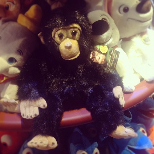 Oh my, how cute is Oscar?! ;) #Chimpanzee at Disney Store today.