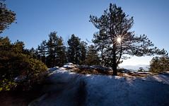 Sun on the Mt. Work summit