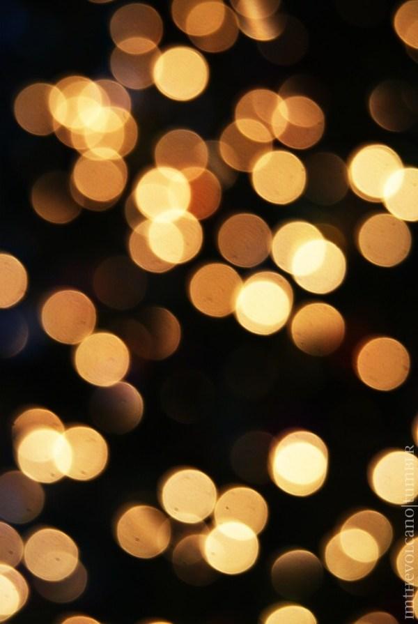 christmas lights miami # 63