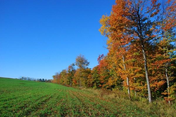western pennsylvania fall landscape