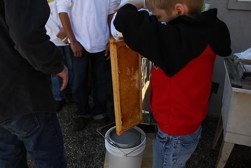 Spinning honey comb