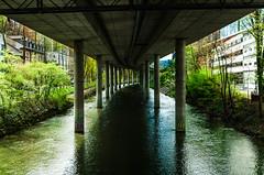 Urban Nature Habitat