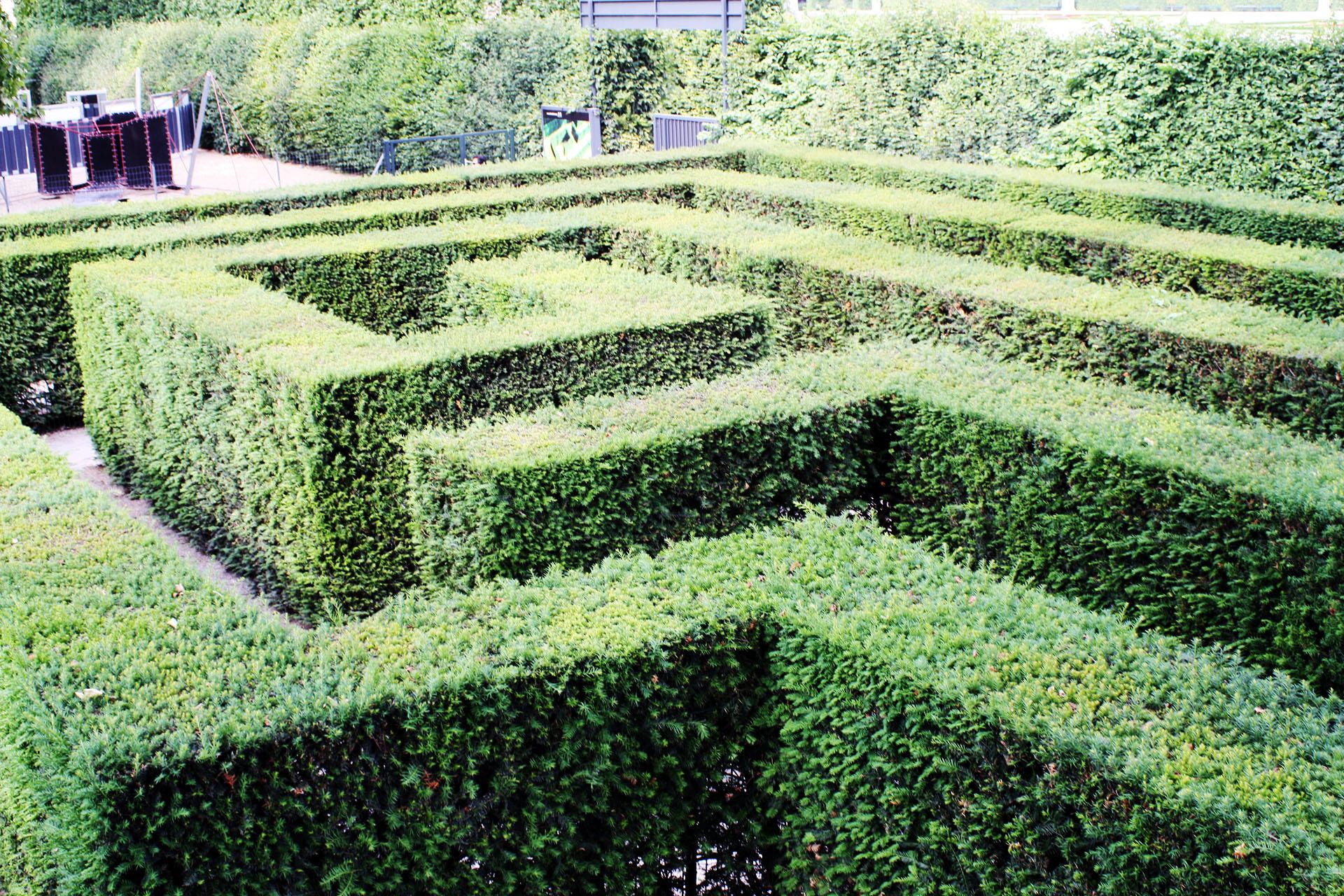 The maze, Schönbrunn Palace.