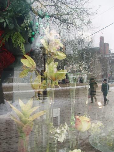 201012190074_Amsterdam-florist-reflections