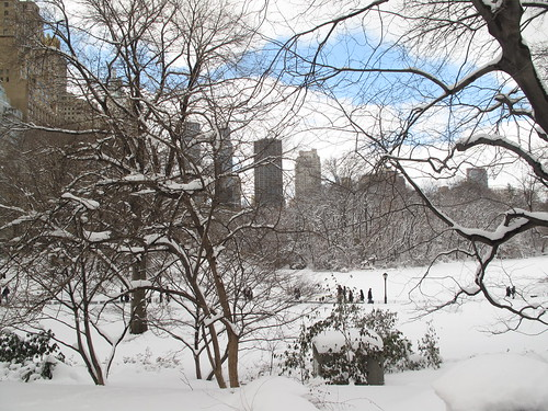 Central Park like wintry Narnia