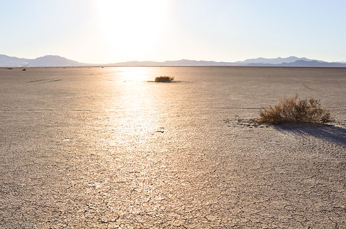 Willcox Playa Dry Lake