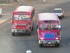 Onibus Acapulco - México