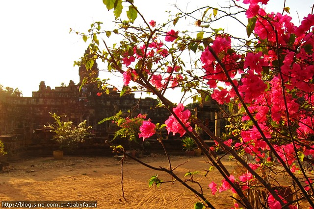 BKK_Angkor 1319