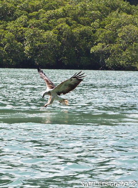 20120407 2012.04.07 Island Hoping @ Langkawi-18