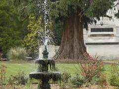 Fountain 2