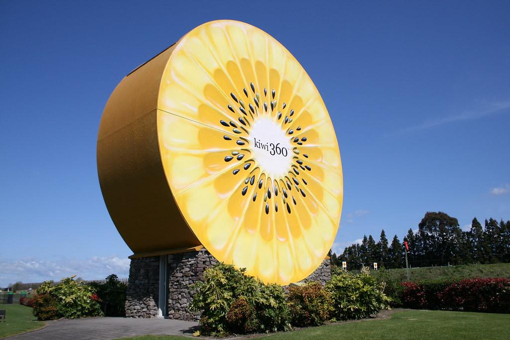 Big Kiwi Fruit
