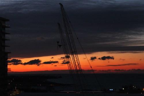 2 cranes at dawn