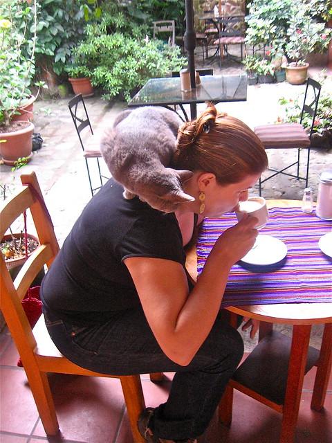 Cafe Fernando in Antigua