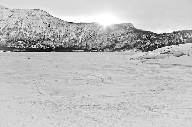 Frozen fjord