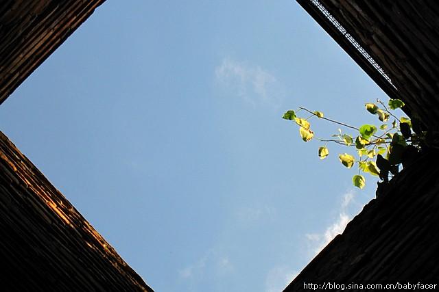 BKK_Angkor 730