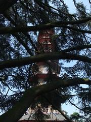 Kew Gardens (18)