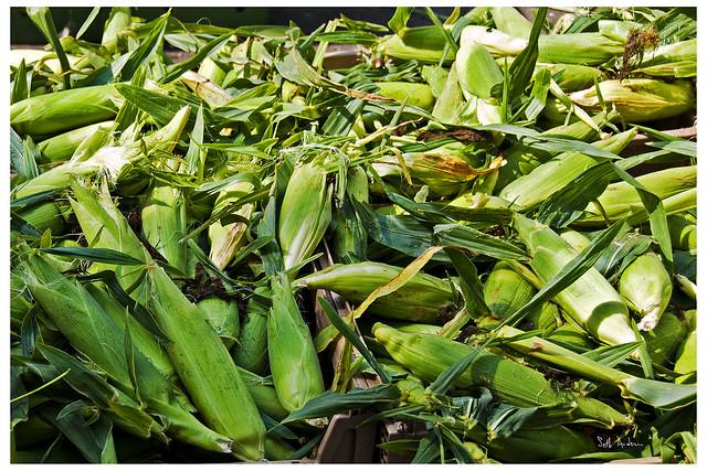 Corn and Cornier
