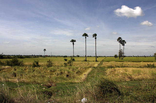 stunning Cambodia