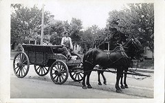 circa 1915 - Man, Horses and Wagon
