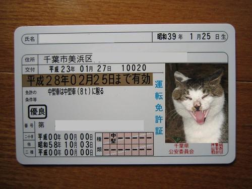 ウン十年ぶりにゴールド免許