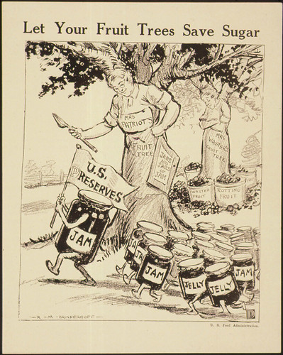 """Let Your Fruit Trees Save Sugar."", ca. 1917 - ca. 1919"