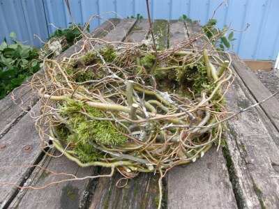 forest basket with curly willow, vine maple, and moss