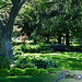 Vanderveer Park, Davenport IA