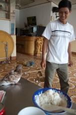 Mann mit verletzter Taube