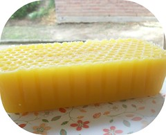 Honey and shea butter soap loaf photo taken june 2011