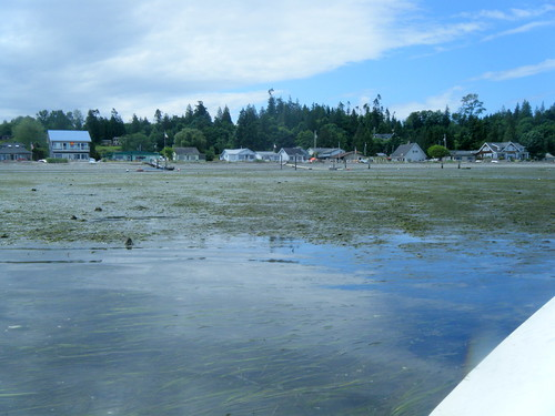 Samish Island North Beach