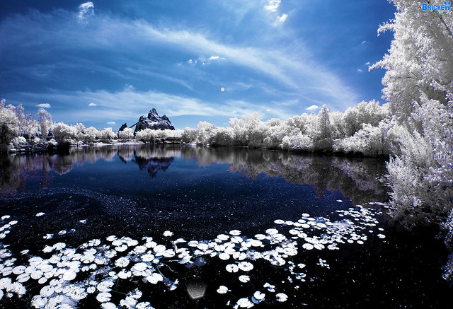 Winter Expedition To Disney's Everest (Infrared Image)