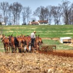 Road Tripping: Pennsylvania Dutch Country