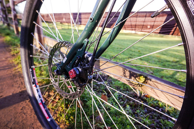 Surly Disc Trucker: Fork Dropout